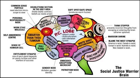 social-justice-warrior-brain