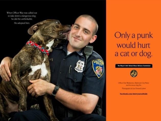 animalcruelty5