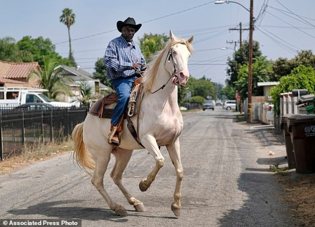 Ivory McCloud maneuvers his horse, Diamond, down a street in Compton, Calif., on Sunday, Aug. 7, 2016. Although best known as the birthplace of gangsta rap and the hometown of tennis superstars Venus and Serena Williams, Compton has a long and vibrant equestrian history. (AP Photo/Richard Vogel)