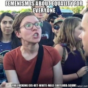 triggered-feminist-equality