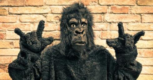bigstock-funny-fake-gorilla-with-rock-a-109817777